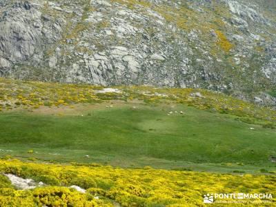 Pico del Zapatero, Sierra de la Paramera; viajes puente octubre; club solteros madrid